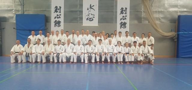 Bujutsu Seminar in Europe 23-24.06.2018 Berlin - Shihan Ushiro Kenji
